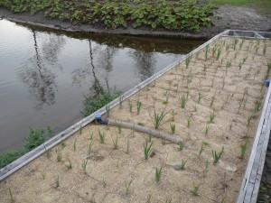Damwand-Amsterdam-Bijlmerpark