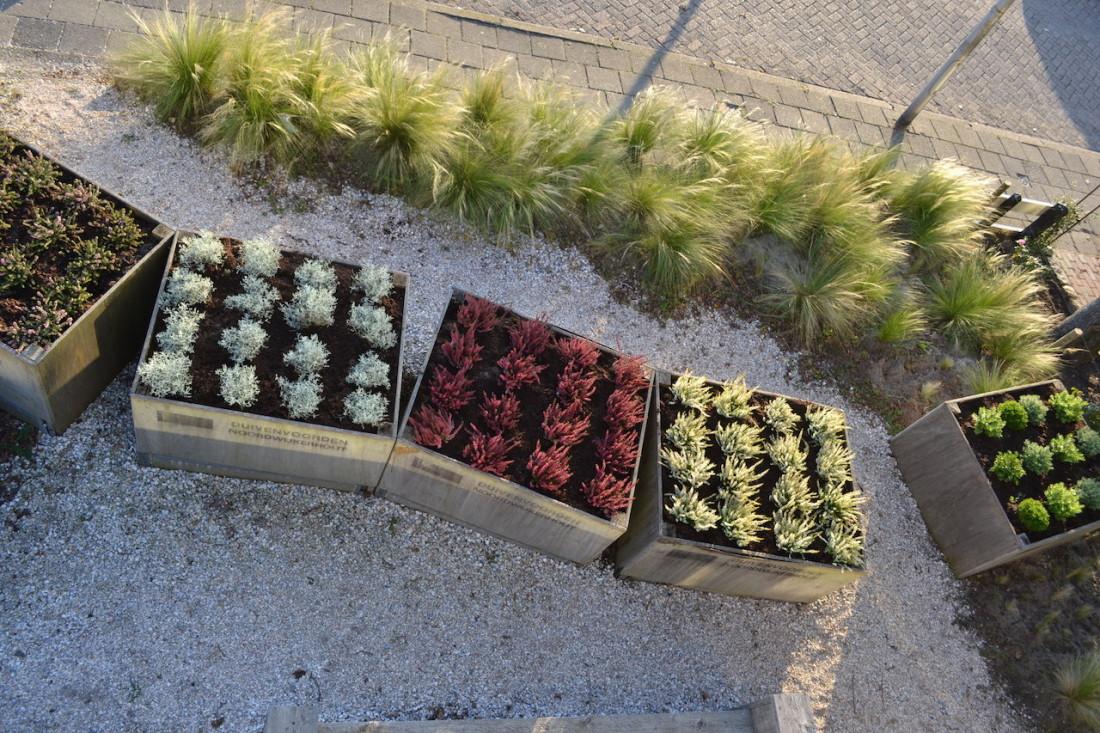 Tuinarchitectuur De Zilk tuin