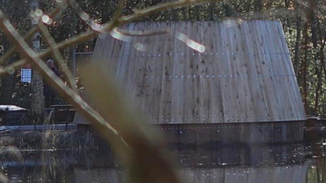 vogelkijkscherm